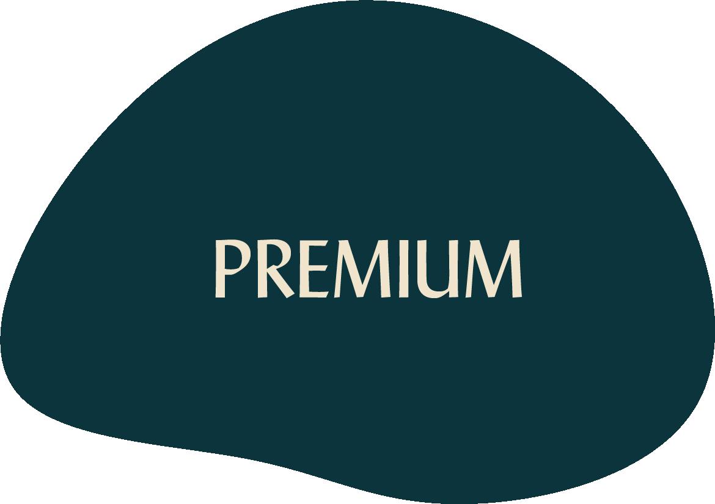 Asset 28Premium Graphic